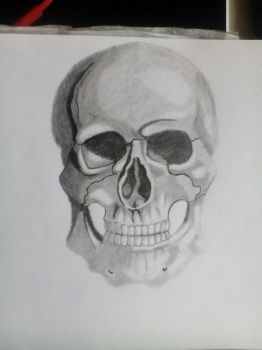 drawing of a skull by Raziel993