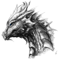 The Silver Wyrm by TheSilverWyrm