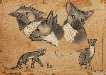 Day #23 Trico by CauseTears