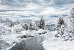 Frozen winter by Lapin-Volant