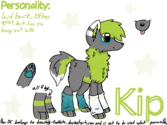Kip - Official Reference Sheet by NeonPlaysMincecraft