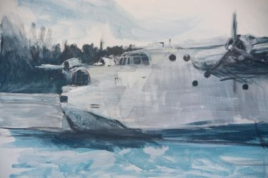 SHORT SUNDERLAND by TheRealDarkRevan