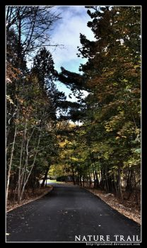 Nature Trail I by Grishend