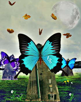 Butterfly Effect by vilucm
