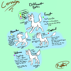 Cervulp Type Guide by royalraptors