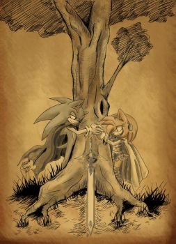 Sonic and Amy by LeonS-7