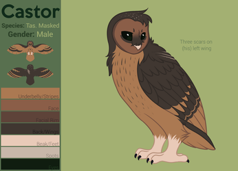 Castor Reference by SheepShape