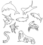 Sealife doodles by crazylunagirl