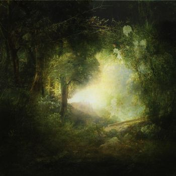 stock image forest hollow by SweetDreamsArt