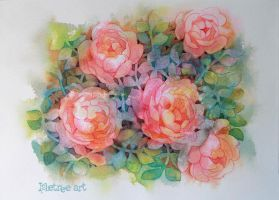 Pale red roses by isletree