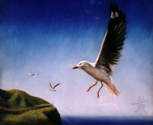 Silver Gull on the Wing by Lil-el-art