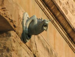 Gargoyle Olympia Old Capitol by dsimple