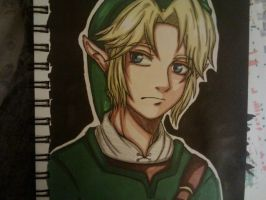 Legend of Zelda: Link by Millie-Rose13