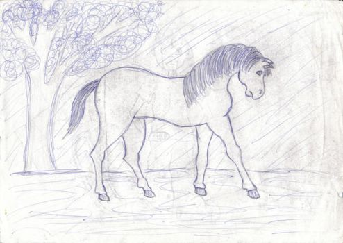 A Horsey.. lol by xMxAxGx