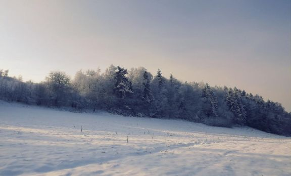 A wintry moment by ANorthernStar