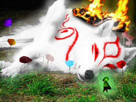 Okami by Both-eyes-open
