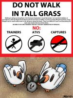 PKMN-ORAS Hype--Please Don't Step on the Wingull