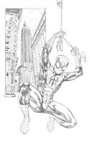 Ultimate Spider Man by thejeremydale