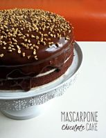 Mascarpone Chocolate Cake by MeYaIeM