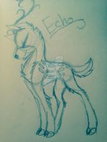 Echo (Request) by Sybelthewolf