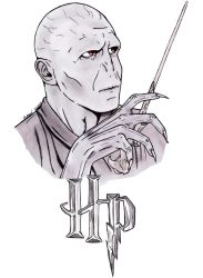 Lord Voldemort by EliM18