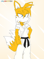 Tails the Karate Fox by VolksGTiFox