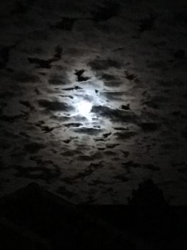 moon and clouds by Vohyd