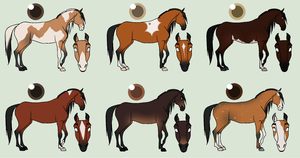 Bay Horsie Adopts|CLOSED| by derp8675309