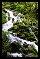 Paradise Falls by The-Chez