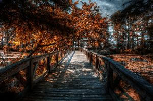 Fall Pier HDR by joelht74