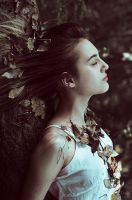 Michelle in the Wood IV by Michela-Riva