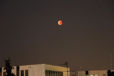 Lunar Eclipse and Mars Opposition by wiebkerost
