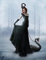 Lady Black Swan by NarsisBlack