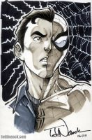 Peter Parker Spider-Man by ToddNauck