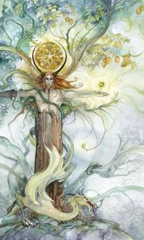 King of Pentacles by puimun