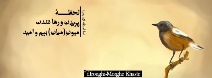 Fb Cover-Foroughi Morghe khaste by h-rafiee