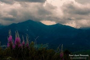 Mountain light - noon by vertiser