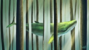 Forest whale by ilyoss