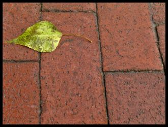 On the Bricks by hat-topic