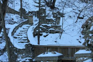 Phelps Park Steps in Winter by mitsubishiman