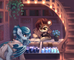 Dreamstore by GrayPillow