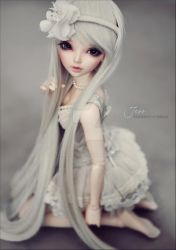 Silver by AndrejA
