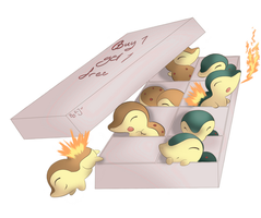 buy them cyndaquils by EvilQueenie