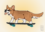 coolest corgi in town by Savkate