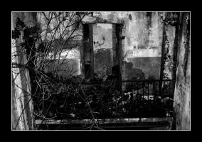 rusted 8 by buio