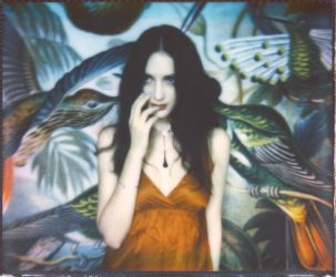 Lo and the birds. by Alyz