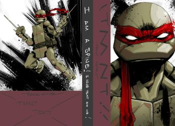 TMNT IDW collection vol1 (pt1) by dan-duncan