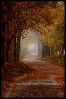Road to Fall by Waagneer