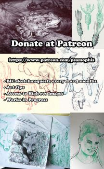 Patreon Compilation by Psamophis