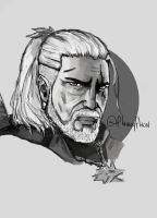 Geralt of rivia by flawyflaw